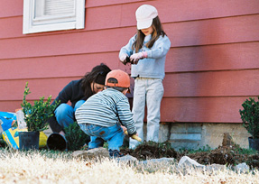 Eco-friendly Activities For Kids