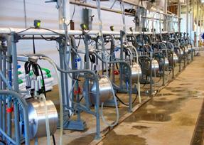 Dairy Farm Energy Consumption