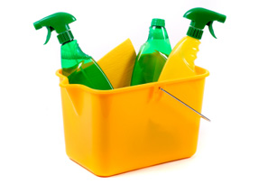 Environmental Friendly Cleaning Products