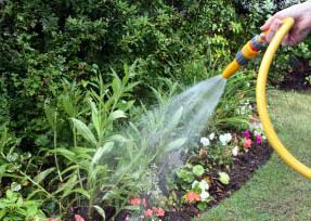 Garden Water Saving